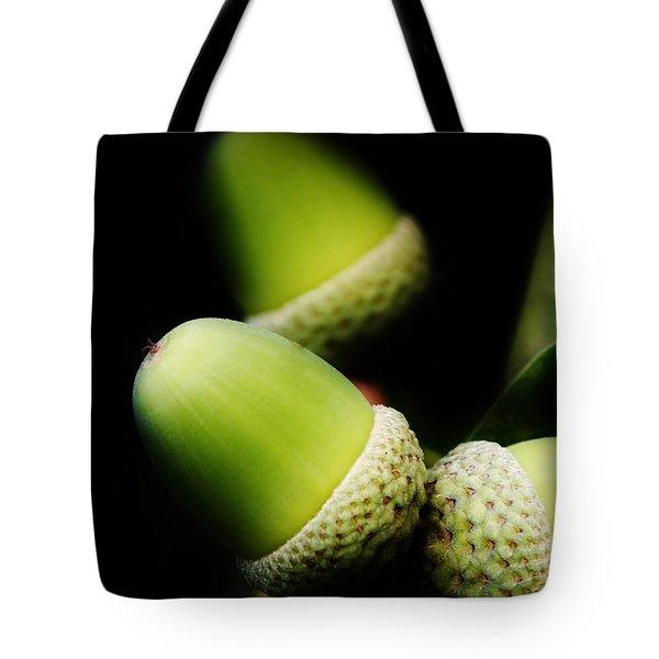 Foliage And Acorns Tote Bag