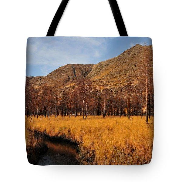 Glen Torridon Tote Bag
