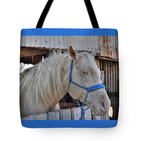 Horse Tote Bag by Savannah Gibbs