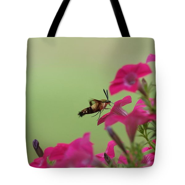 Tote Bag featuring the photograph Hummer Moth by Heidi Poulin
