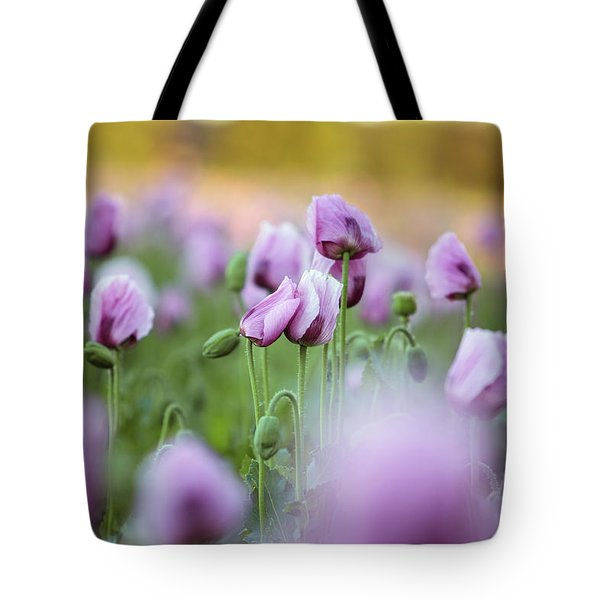 Lilac Poppy Flowers Tote Bag