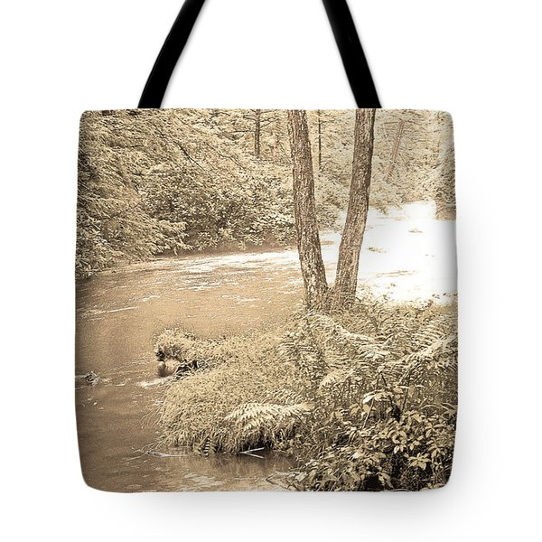 Tote Bag featuring the photograph Mud Run Pocono Mountain Stream Pennsylvania by A Gurmankin