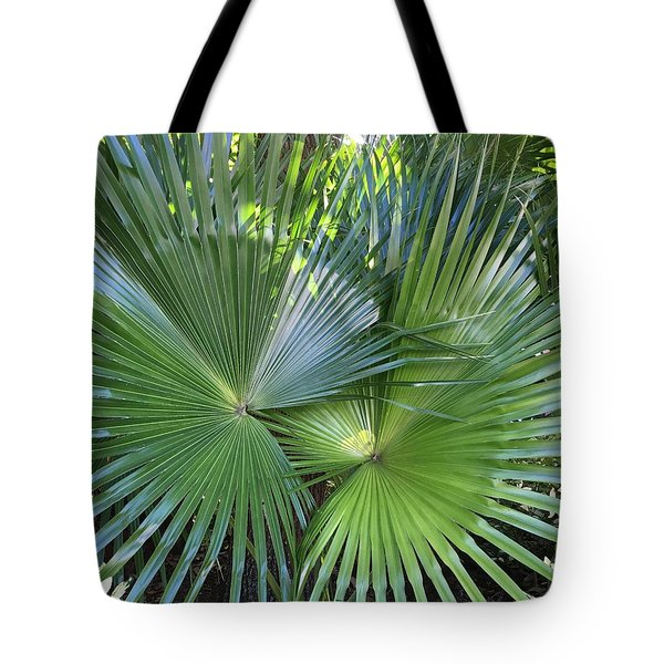 Palm Fronds Tote Bag by Kay Gilley