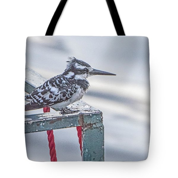 Tote Bag featuring the photograph Pied Kingfisher by Pravine Chester
