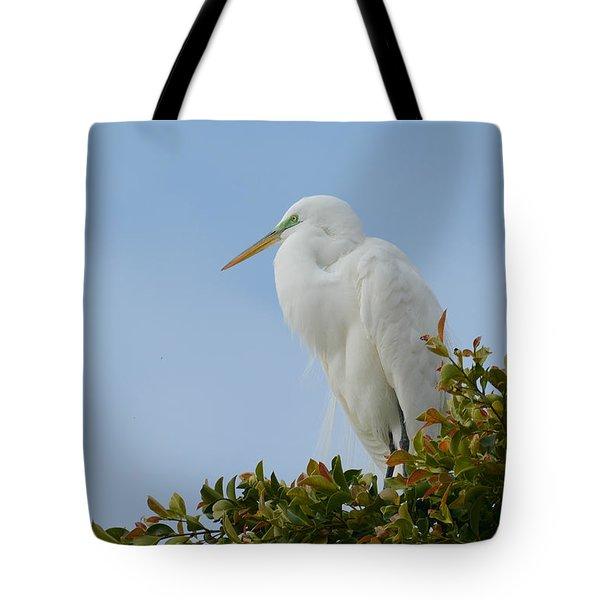 Poised Tote Bag by Fraida Gutovich