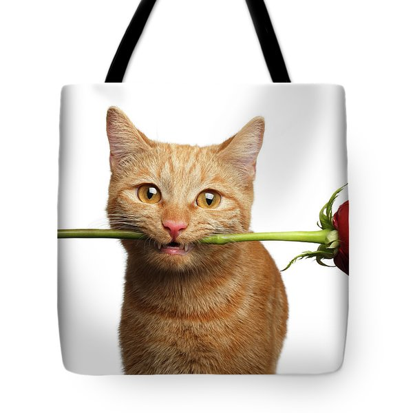 Portrait Of Ginger Cat Brought Rose As A Gift Tote Bag