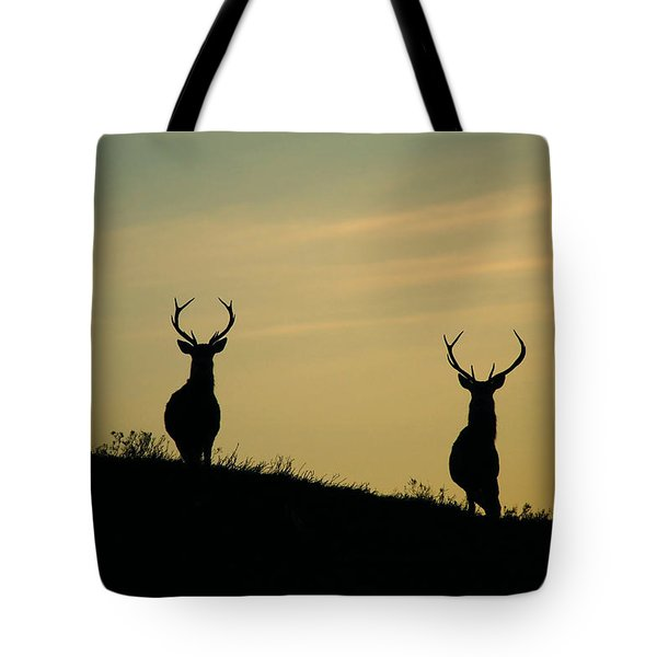 Red Deer Stags  Tote Bag