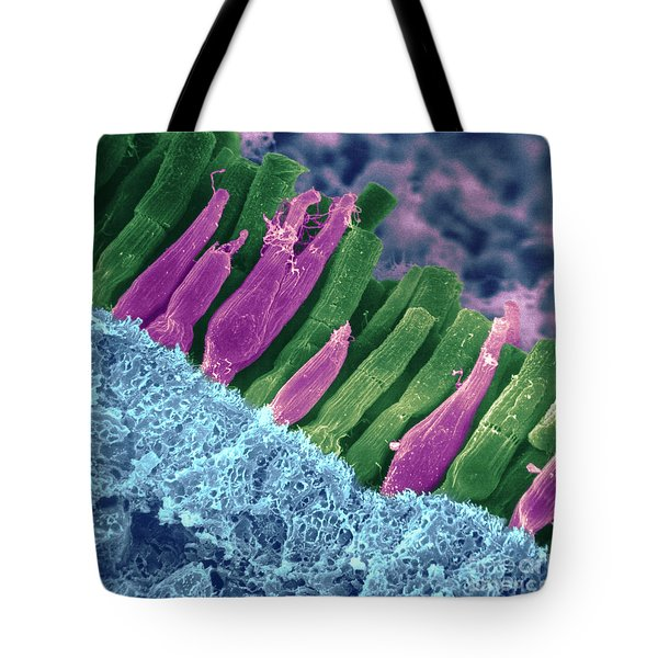 Rods And Cones In Retina Tote Bag