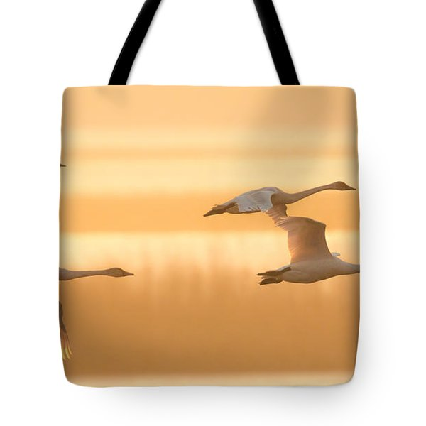 4 Swans Tote Bag by Kelly Marquardt