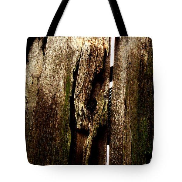 Texture Series Tote Bag by Amanda Barcon