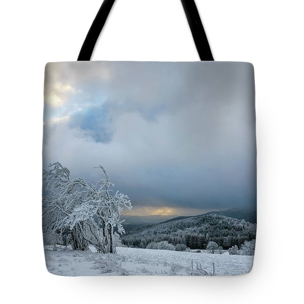 Typical Snowy Landscape In Ore Mountains, Czech Republic. Tote Bag