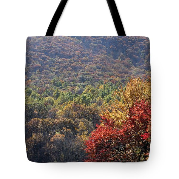 View Of Abbott Lake And Sharp Top In Autumn Tote Bag
