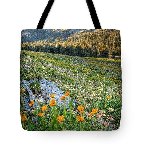 Wasatch Mountains Tote Bag