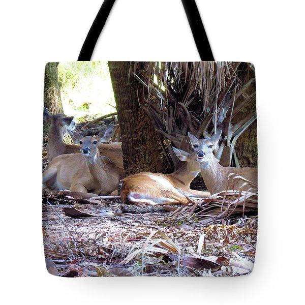4 Wild Deer Tote Bag