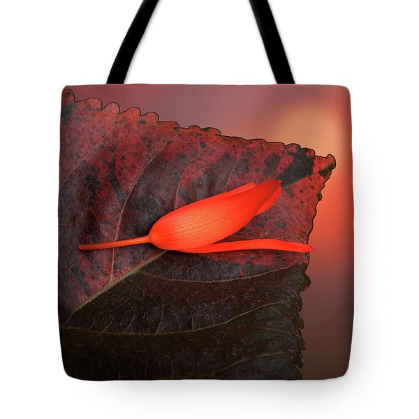Tote Bag featuring the photograph 4366 by Peter Holme III