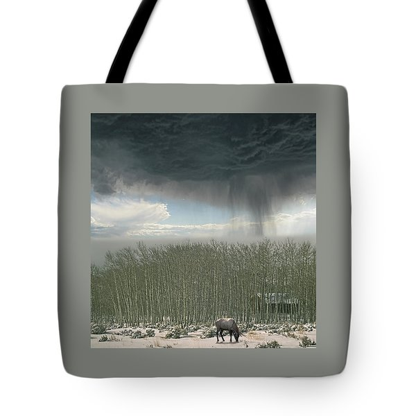 Tote Bag featuring the photograph 4375 by Peter Holme III