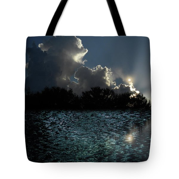 Tote Bag featuring the photograph 4377 by Peter Holme III