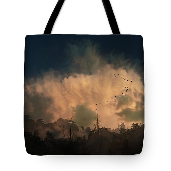 Tote Bag featuring the photograph 4382 by Peter Holme III