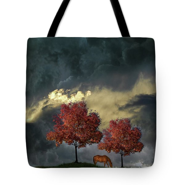 Tote Bag featuring the photograph 4384 by Peter Holme III