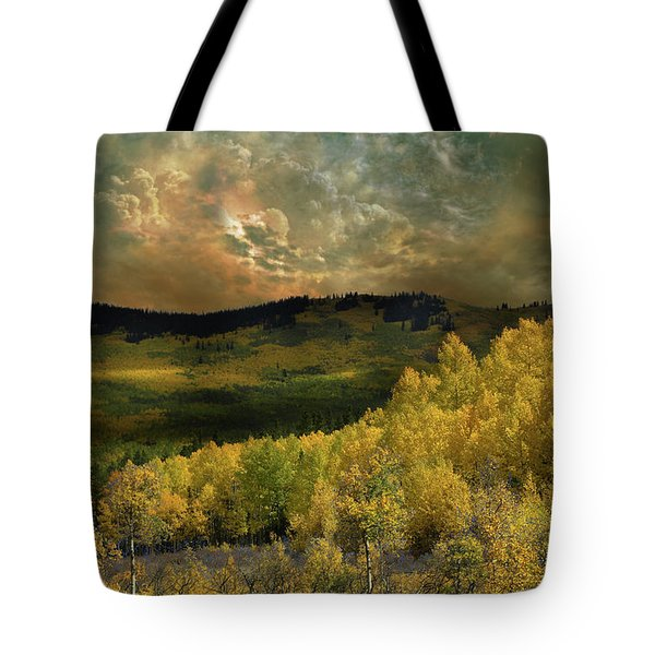 Tote Bag featuring the photograph 4394 by Peter Holme III
