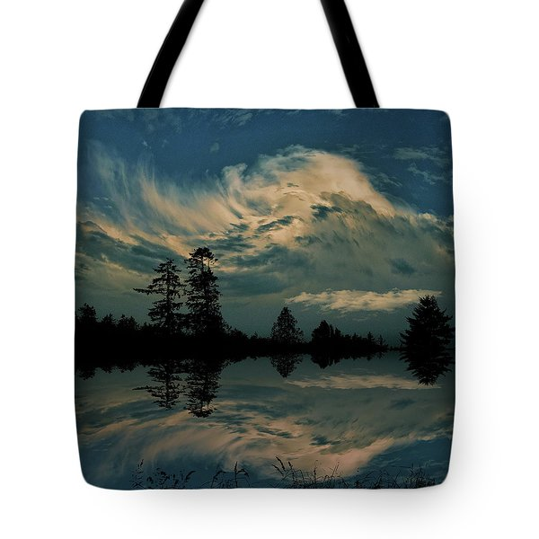Tote Bag featuring the photograph 4395 by Peter Holme III