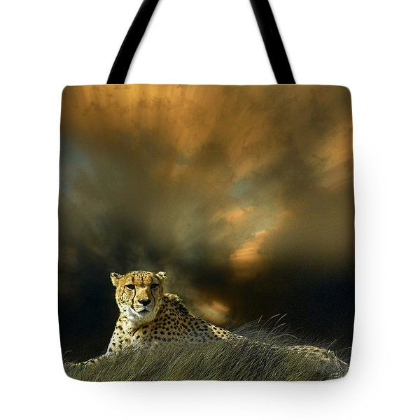 Tote Bag featuring the photograph 4452 by Peter Holme III