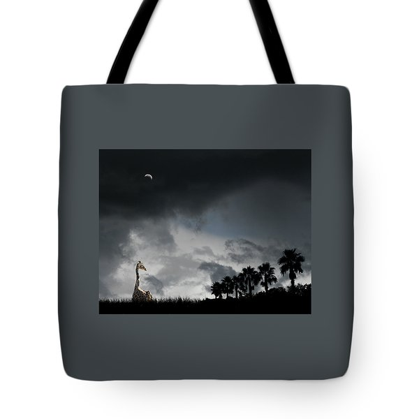 Tote Bag featuring the photograph 4458 by Peter Holme III