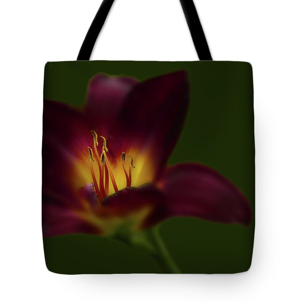 Tote Bag featuring the photograph 4479 by Peter Holme III