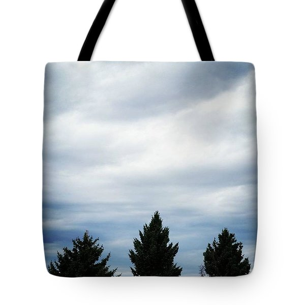 Mountain View Motel Tote Bag