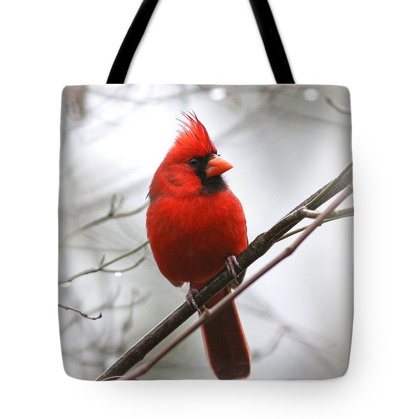 4772-001 - Northern Cardinal Tote Bag