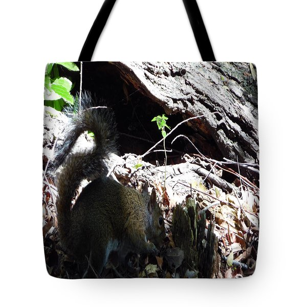 4802015 Squirrel In Marsh  Louisiana Tote Bag