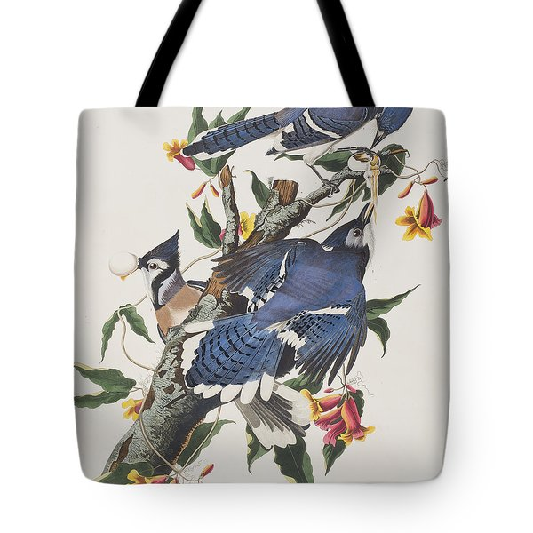 Blue Jay Tote Bag by John James Audubon