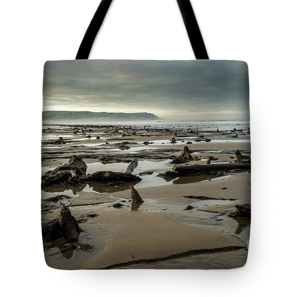 Bronze Age Sunken Forest At Borth On The West Wales Coast Uk Tote Bag