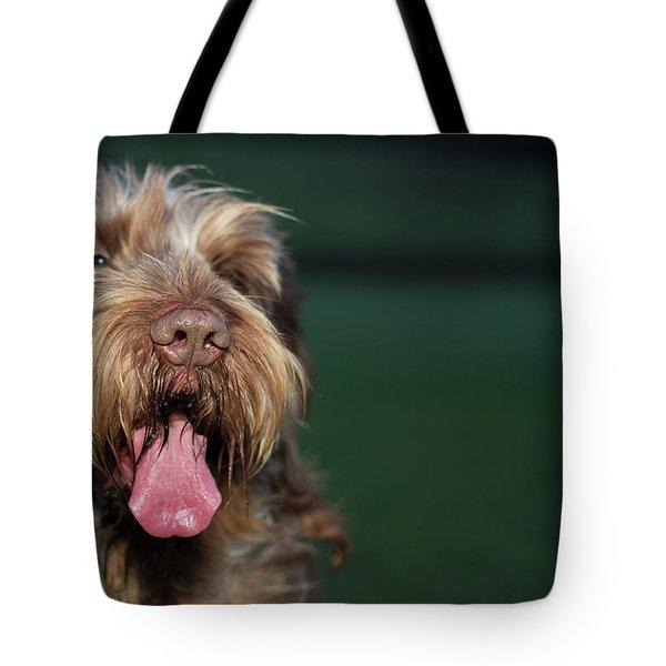 Brown Roan Italian Spinone Dog Head Shot Tote Bag