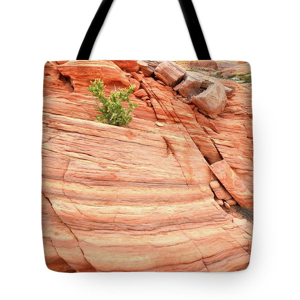 Tote Bag featuring the photograph Colorful Wash In Valley Of Fire by Ray Mathis
