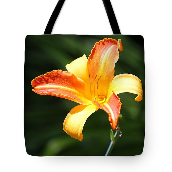 Tote Bag featuring the photograph Day Lily by Irina Hays