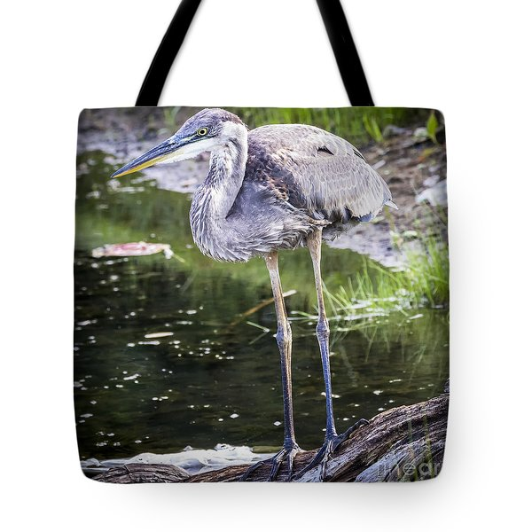 Tote Bag featuring the photograph Great Blue Heron by Ricky L Jones