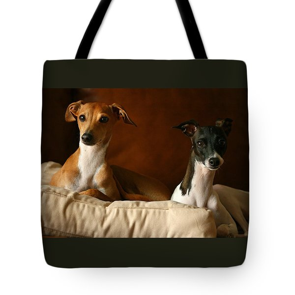 Italian Greyhounds Tote Bag by Angela Rath