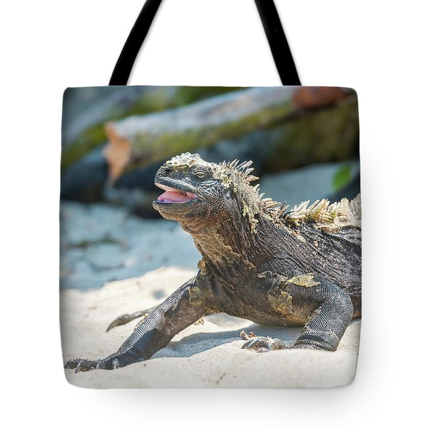 Marine Iguana On Galapagos Islands Tote Bag