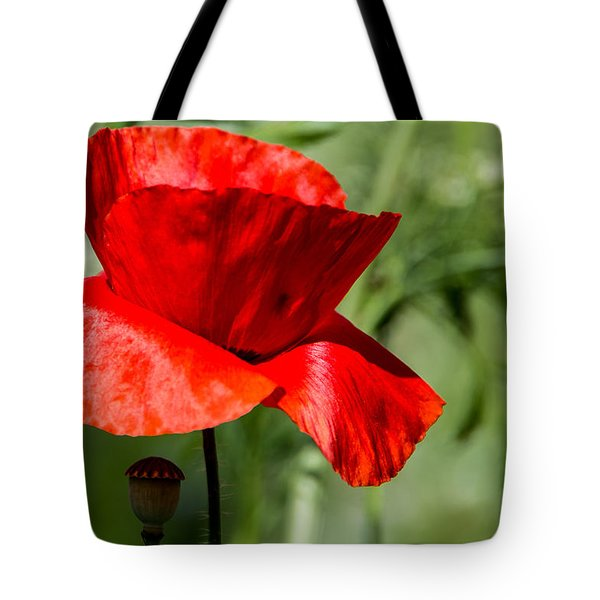 Poppy Tote Bag by Martina Fagan