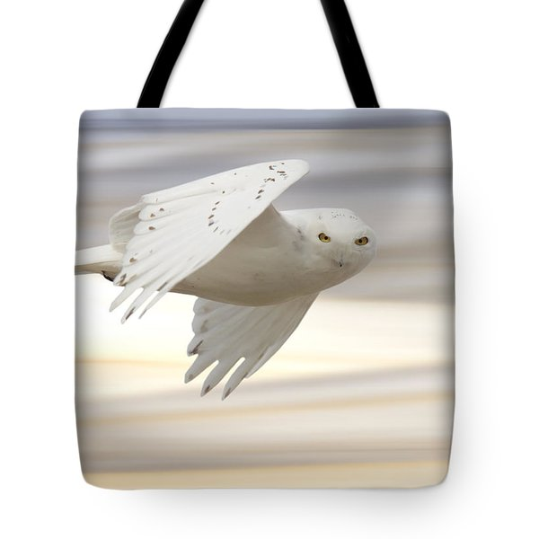 Snowy Owl In Flight Tote Bag by Mark Duffy