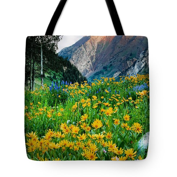 Wasatch Mountains Tote Bag by Utah Images
