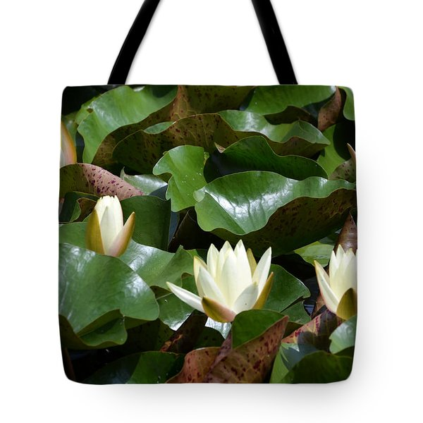 5 Water Lilies Opening Tote Bag