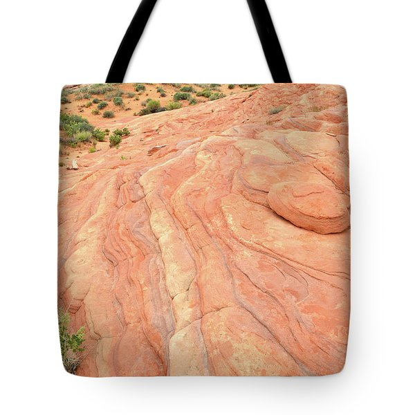 Tote Bag featuring the photograph Wave Of Color In Valley Of Fire by Ray Mathis