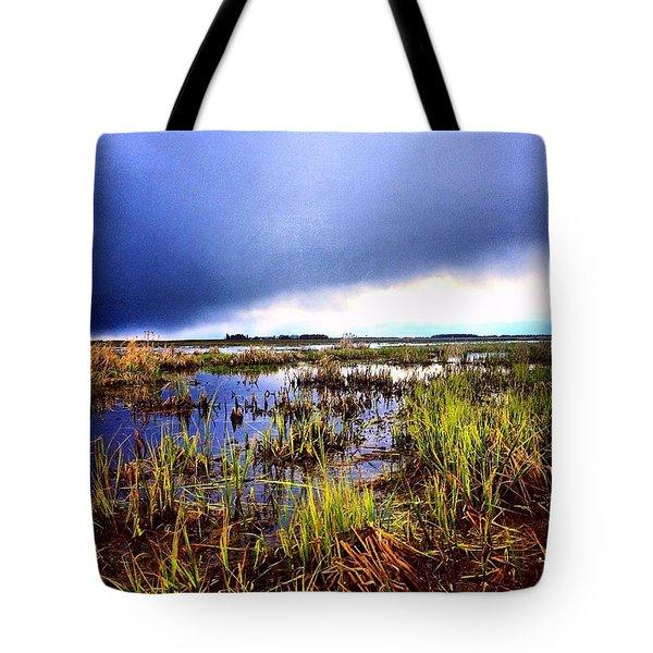 Wet Lands Alberta Tote Bag