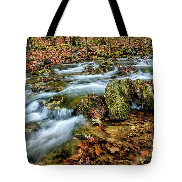 Tote Bag featuring the photograph Aldrich Branch Monongahela National Forest by Thomas R Fletcher