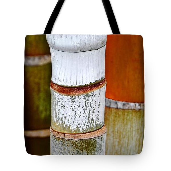 Bamboo Palm Tote Bag by Werner Lehmann