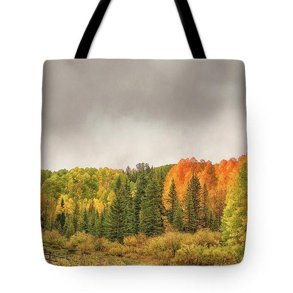 Colorado Fall Foliage 1 Tote Bag