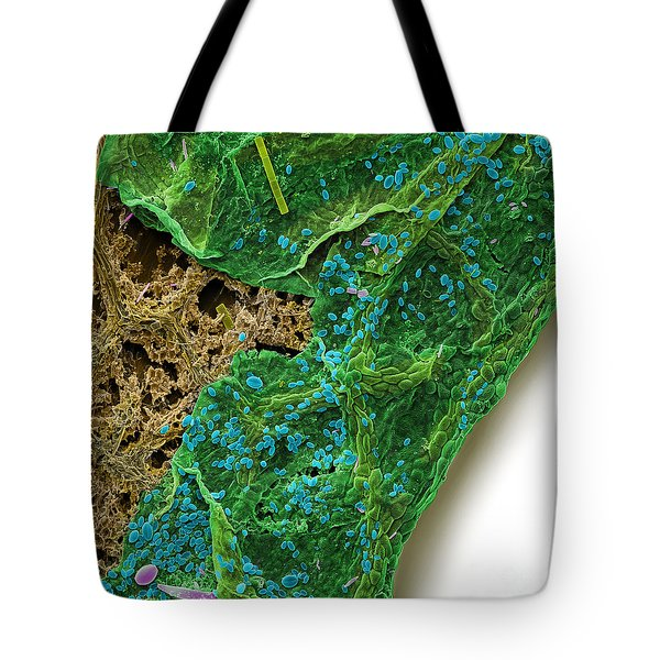 Diatoms Eating A Maple Leaf Tote Bag