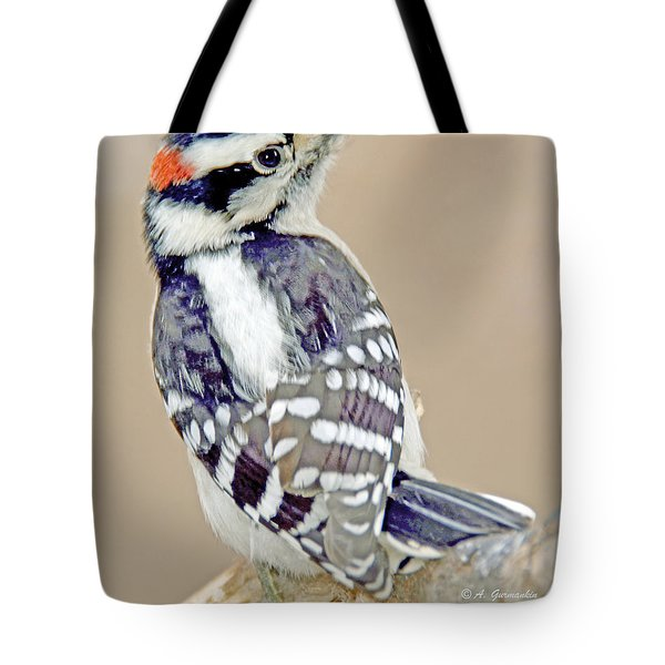 Tote Bag featuring the photograph Downy Woodpecker Male On Tree Limb by A Gurmankin